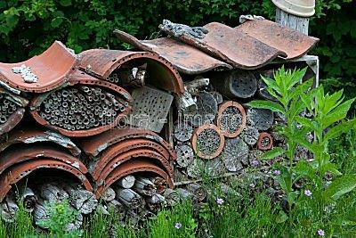 insect-hotel-11765.jpg
