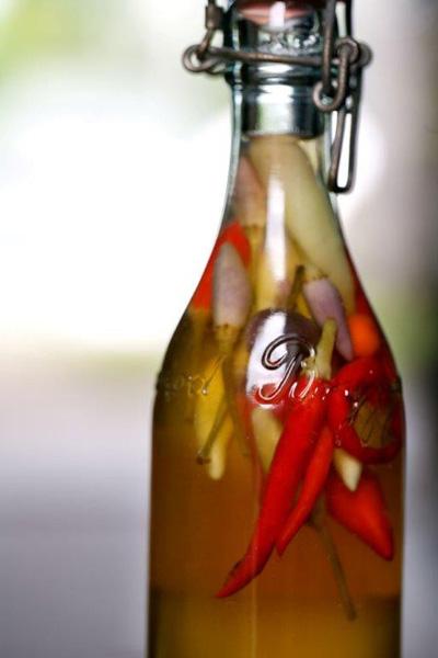 camilla plum fermentering
